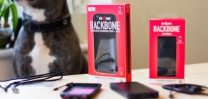 dog and bone backbone featured
